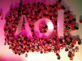 AOL// Foto Flickr/KellyReeves