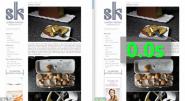 Instant Pages acelerará la carga de páginas durante el proceso de búsqueda