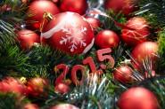 Fuente-Shutterstock_Autor-Denis Vrublevski_Navidad-2015