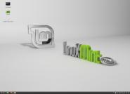 LinuxMintRC13