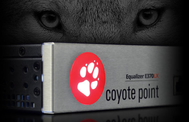 coyote point ADC fortinet