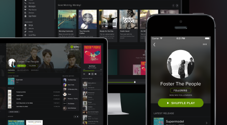 overview spotify