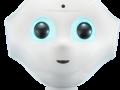 pepper_robot humanoide