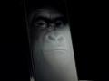 corning-gorilla