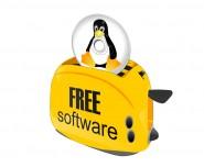Fuente-Shutterstock_Autor-claudionegri79_Linux