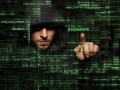 ciberdelincuencia