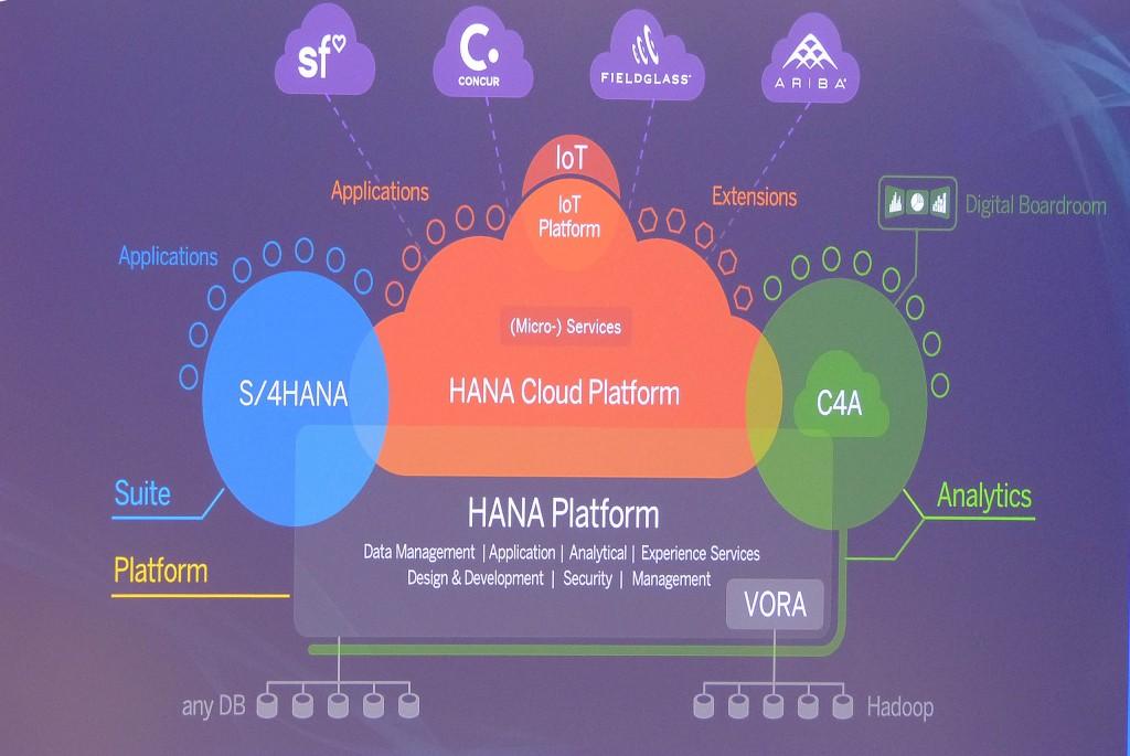 La plataforma SAP HANA se encuentra disponible en las modalidades on-premise y on-demand, pero SAP ha querido otorgarle más relevancia a esta última, basada en cloud
