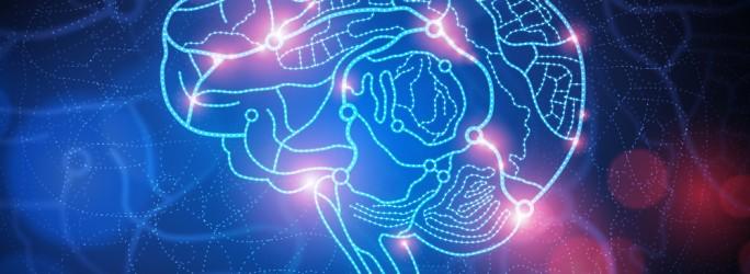 Fuente-Shutterstock_Autor-solarseven_cerebro